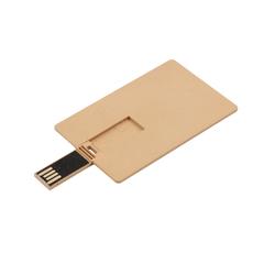 USB fremstillet i et nedbrydeligt fiber materiale