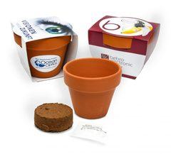 Frø potter (7cm)  med logo tryk
